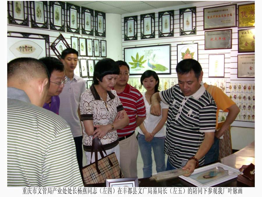 重庆市文管局产业处处长杨燕在丰都县文广局亿、易局长的陪同下参观我厂叶脉画