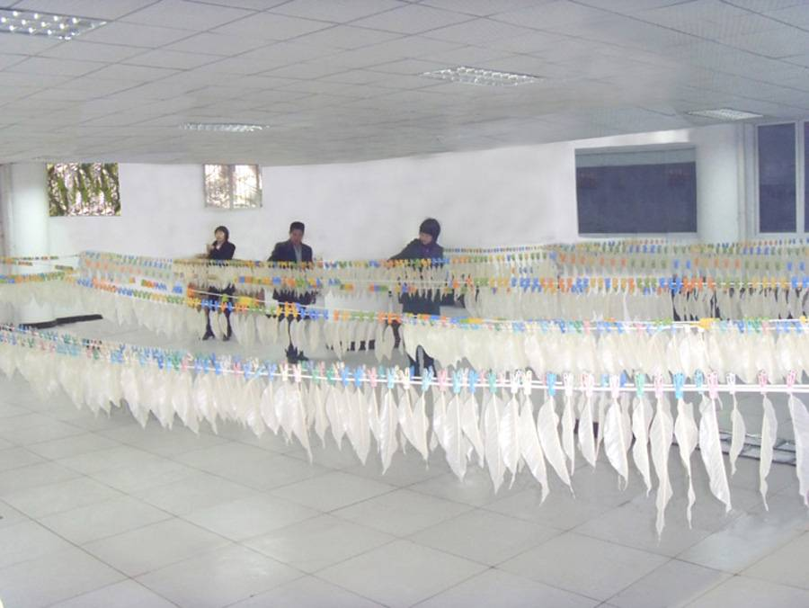 重庆古庭风叶脉画制作场地