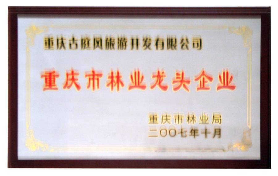 古庭风叶脉画荣获重庆市林业龙头企业